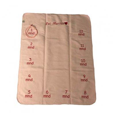 Baby deken met namen en maanden baby deken, baby deken met naam, baby deken met namen en maanden, eerste levensjaar, elke maand een foto, maanden, namen