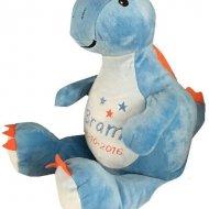 Dino de dinosaurus cubbies, dino de dinosaurus, dino met naam, met naam
